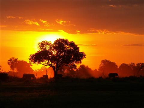 africa_beauty2